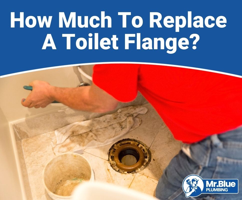 How Much To Replace A Toilet Flange