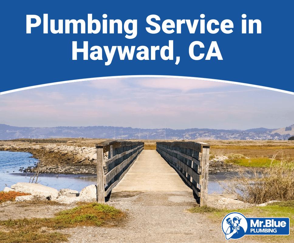 Plumbing Service in Hayward, CA
