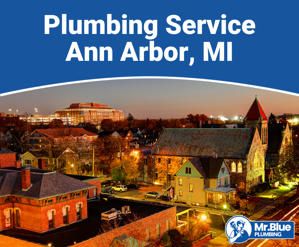 Plumbing Service Ann Arbor, MI