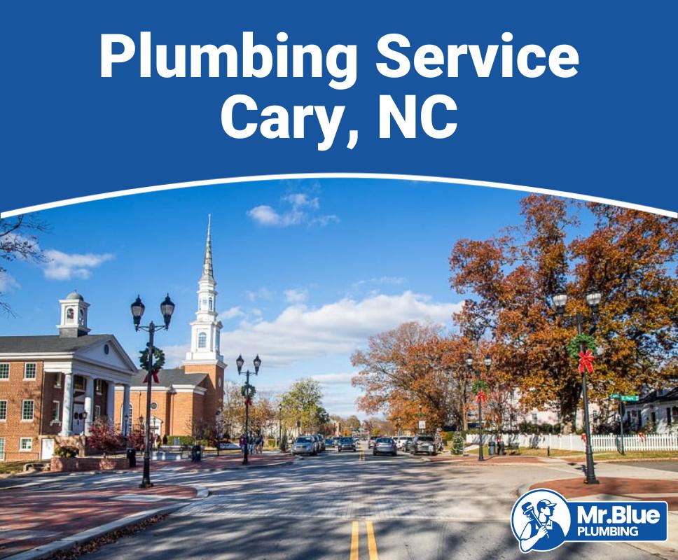 Plumbing Service Cary, NC