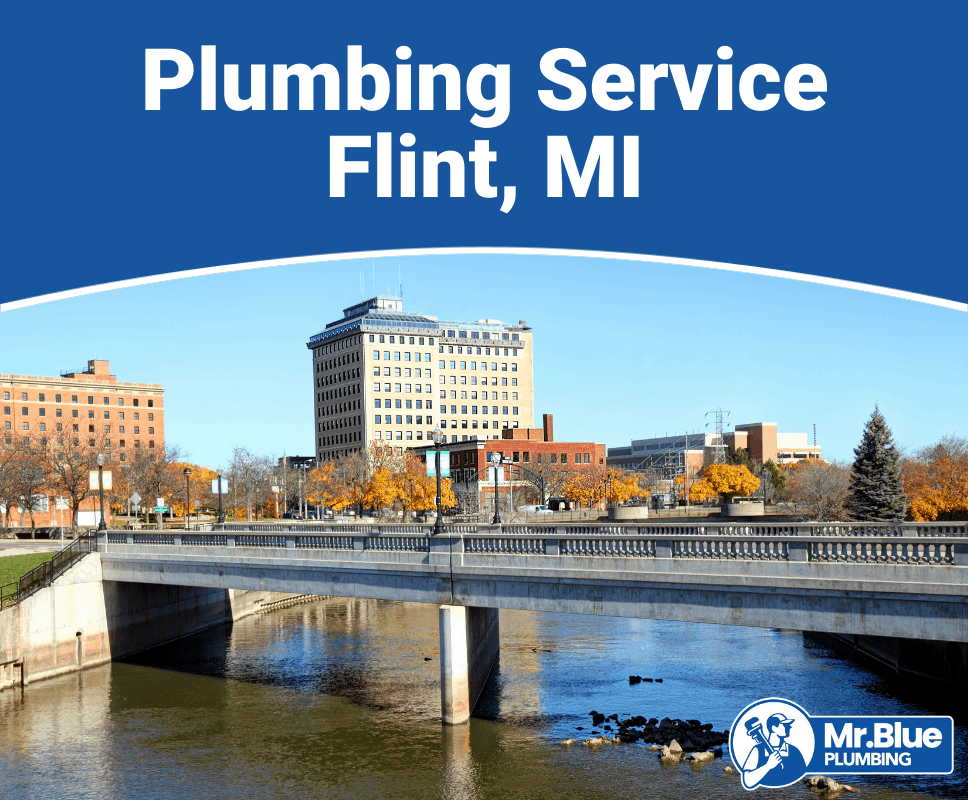 Plumbing Service Flint, MI