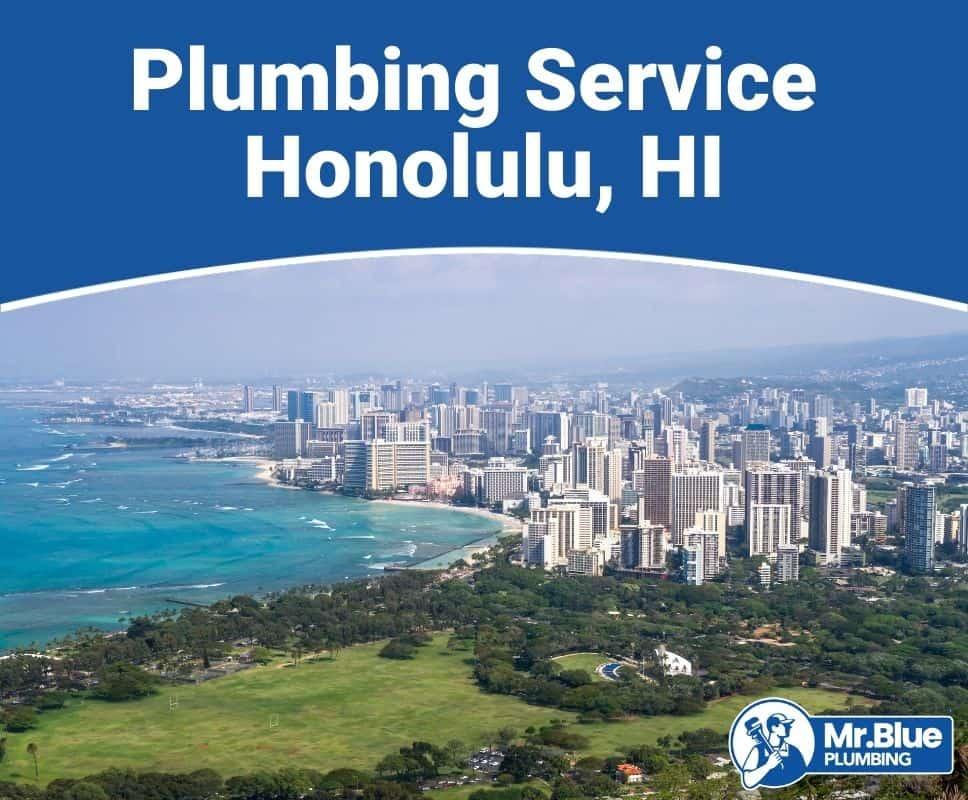 Plumbing Service Honolulu, HI