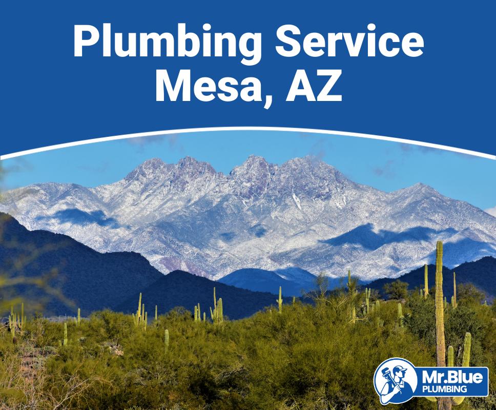 Plumbing Service Mesa, AZ