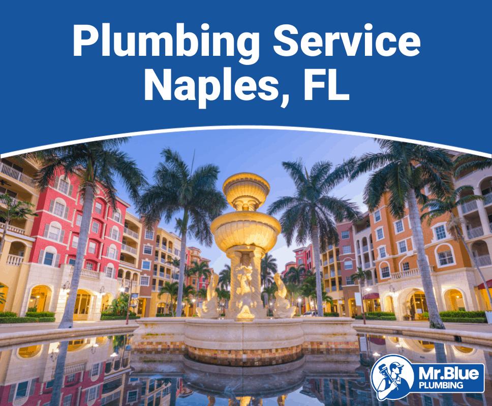 Plumbing Service Naples, FL