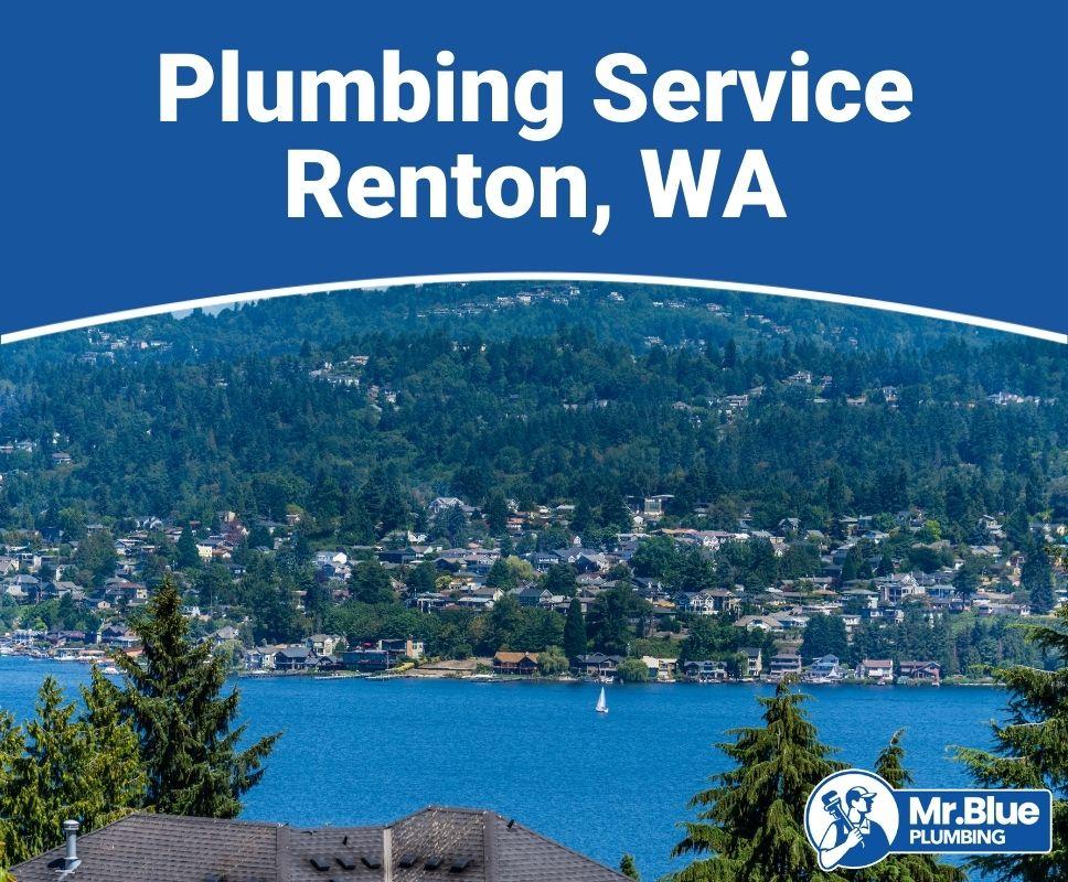 Plumbing Service Renton, WA