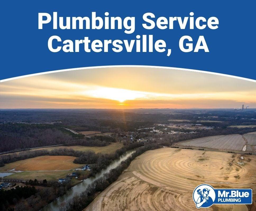 Plumbing Service Cartersville, GA