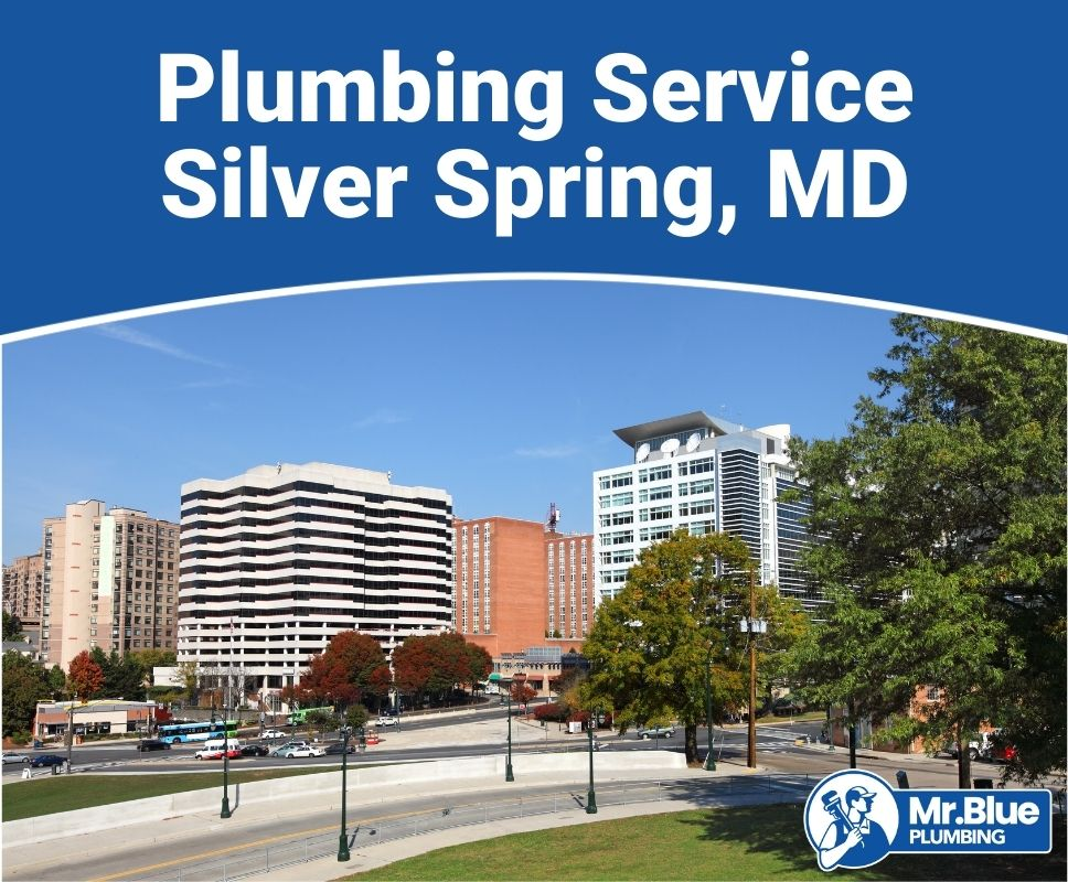 Plumbing Service Silver Spring, MD