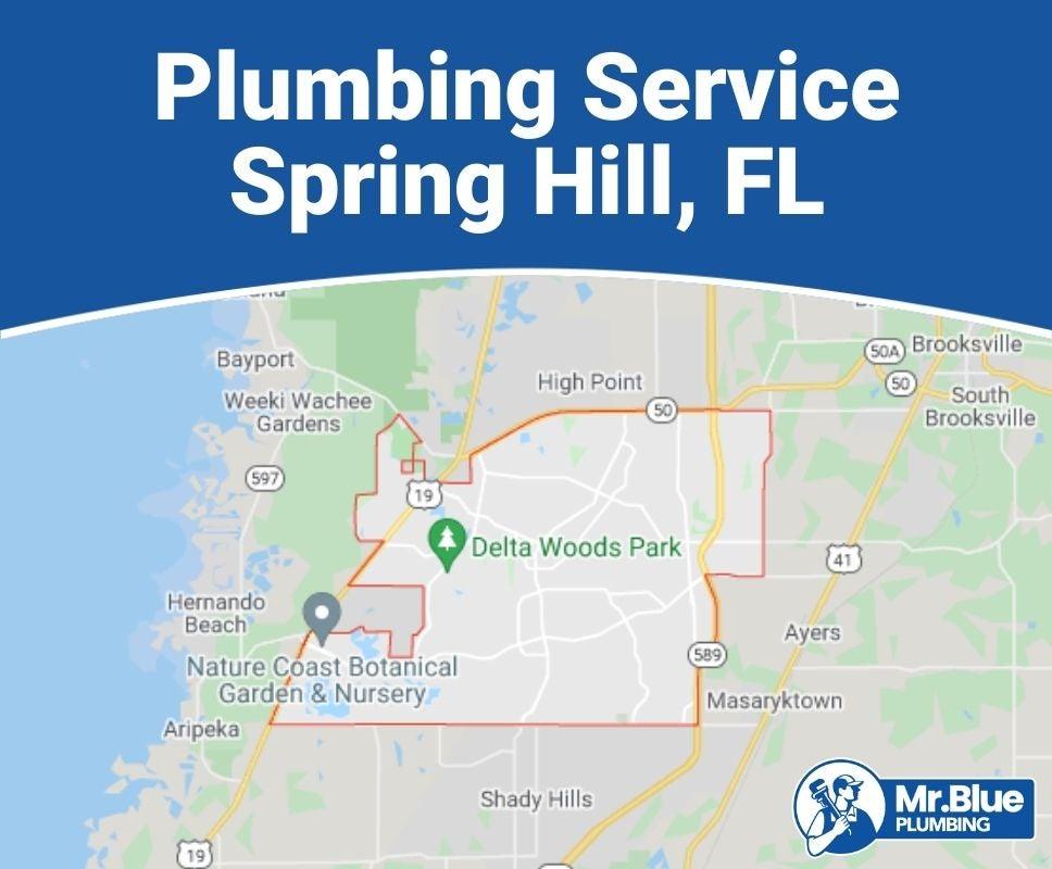 Plumbing Service Spring Hill, FL