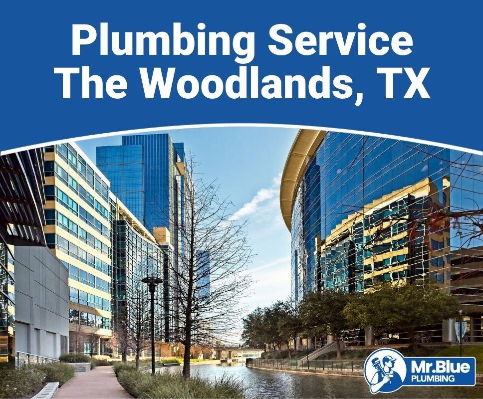 Plumbing Service The Woodlands, TX