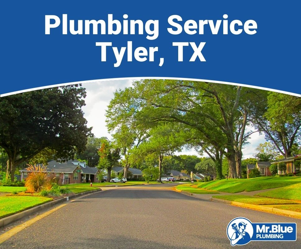 Plumbing Service Tyler, TX