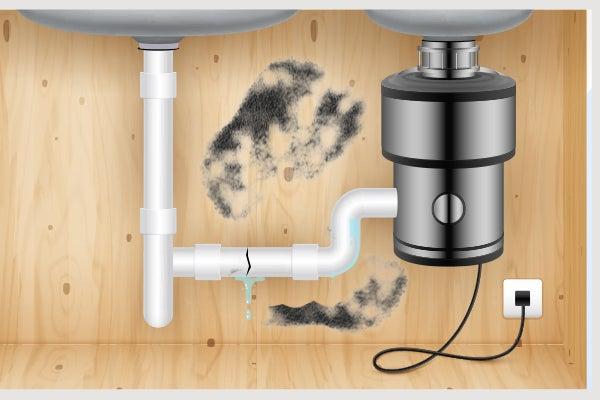 Leaking garbage disposal creating mold